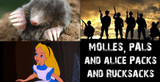 MOLLES, PALS and ALICE Packs – What's the difference?