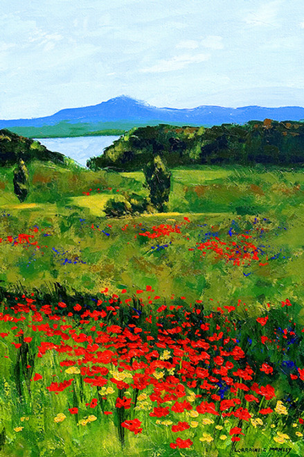 Lake Arrowhead Poppies
