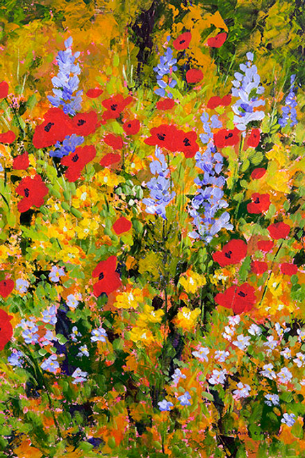 Poppies and Lupines