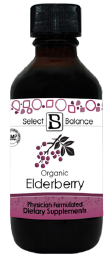 elderberry-03.png