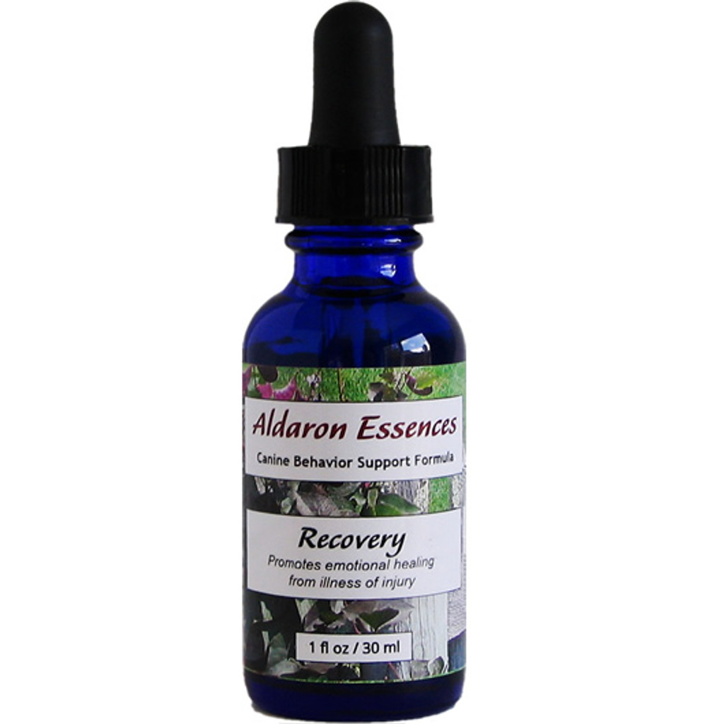 Aldaron Essences Recovery flower essence formula for dogs. Promotes emotional healing during times of illness or injury.