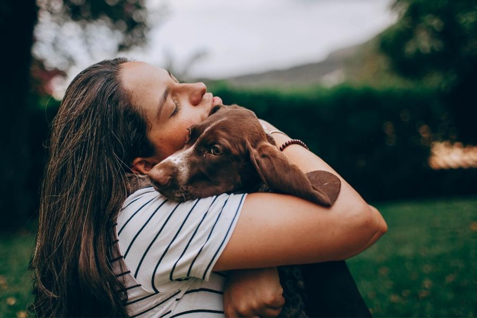 Preventing Dog Behavior Setbacks in Times of Stress