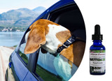 Travel Calm flower essence formula for dogs: for stress, anxiety, and restlessness while traveling