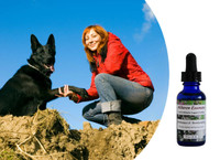 Flower essences for dogs: reduce bullying, posturing, challenging, dominant behavior.