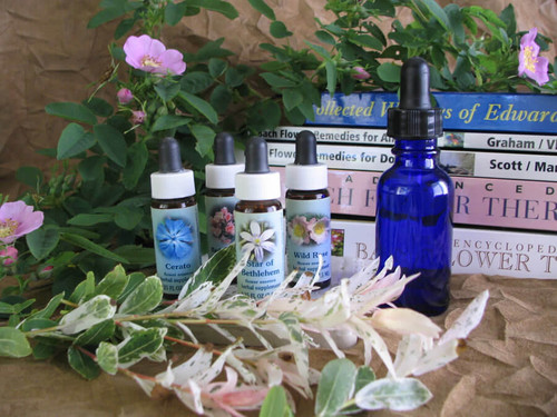 ​Reactive Remedies in Flower Essence Therapy | Aldaron Essences