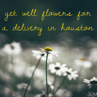 Try Our Houston Flower Delivery for All of Your Well Wishes
