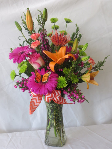 "The Sherbet and Chevron Orange Lily Arrangement with Butterfly from Enchanted Florist is a bright and beautiful bouquet sure to brighten and celebrate her special day! Sunny orange lilies and tropical orange protea are arranged with hot pink gerbera daisies and roses on this tall vase arrangement complete with a orange butterfly resting on the flower. Approximately 18""H x 12""W.   SKU RM152"