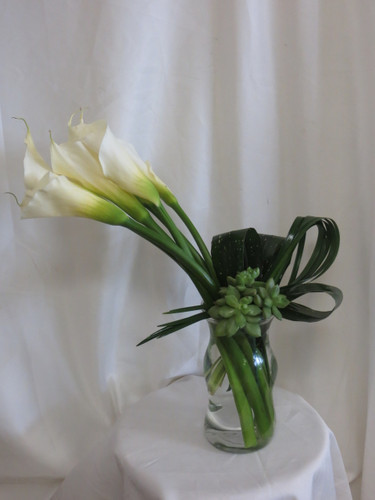 Pure Elegance Succulent and Calla Lily Bouquet by Enchanted Florist TX. Classic white calla lilies and green succulents with folded green tropical foliages. Same day Houston flower delivery and express delivery available by a real florist. Serving Houston with beautiful flowers since 1982.  RM180