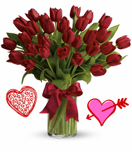 30 Red Tulips for Valentines Day by Enchanted Florist Pasadena TX.  Our thirty red tulips are long lasting and a beautiful non traditional option for Valentines Day for when your special someone wants you to think outside the box, but still want something in the traditional red colors. RM945