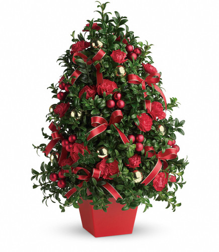 """Deck the Halls Christmas Tree from Enchanted Florist. Your Christmas tree is created with English boxwood, red carnations, red and gold ornaments and yards of beautiful ribbon to make this tree as festive as any! Approximately 15"""" W x 22"""" H   SKU RM255"""