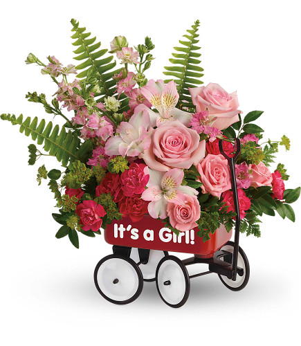 It's a Girl Flowers in Wagon for a New Baby from Enchanted Florist. These It's a Girl Flowers are a beautiful bouquet that includes pink spray roses, light pink alstroemeria, miniature hot pink carnations, pink larkspur, filler flower and various greenery hand delivered in baby's first little red wagon. SKU RM313