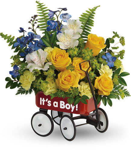 It's a Boy Flowers in Wagon for a New Baby from Enchanted Florist. Yellow spray roses, white alstroemeria, miniature yellow carnation pixies, and blue delphinium are arranged with filler flower and various greenery then hand delivered in baby's first little red wagon.    SKU RM314