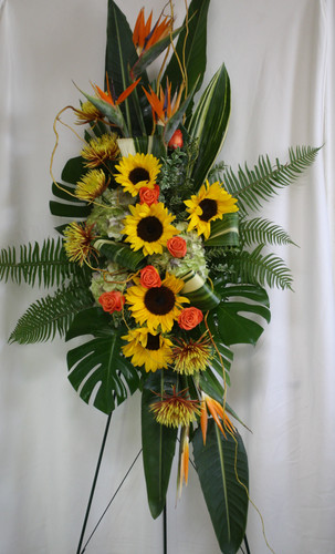 "Birds of Paradise and Sunflower Sympathy Standing Spray from Enchanted Florist. One of our largest sprays in oranges and yellows, our custom spray includes birds of paradise, sunflowers, spiders, orange roses and green hydrangeas, and lots of green foliage to set the design off. Approximately 70""H x 34""W (size not including stand) SKU RM553"