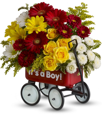 Baby Boy's WOW Wagon Bouquet of Flowers from Enchanted Florist. Sunny yellow spray roses, radiant red gerbera daisies and matsumoto asters, white and yellow daisy flowers, white buttons and yellow solidago are lovingly arranged in a real little red wagon. The wow factor is now officially off the charts with this gift!    SKU RM315