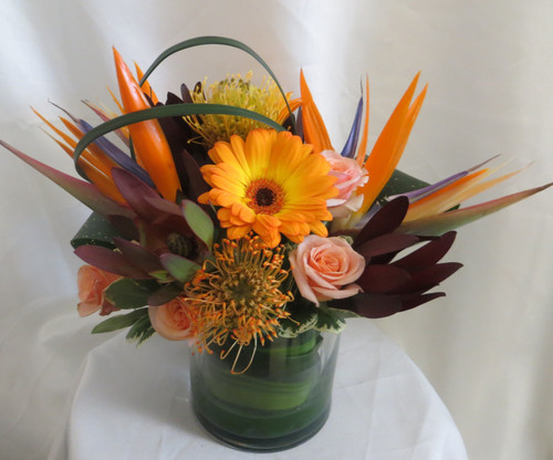 """Caribbean Bird of Paradise Tropical Bouquet from Enchanted Florist Pasadena TX. This tropical bouquet includes birds of paradise, orange gerbera daisies, peach spray roses, protea, safari sunset and is accented with the perfect greenery touches. Approximately10""""H x 8""""W  For local delivery only. SKU RM111"""