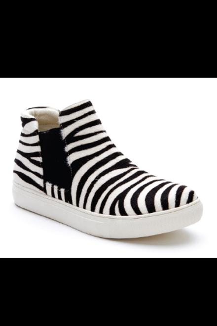 Matisse   Harlan Zebra