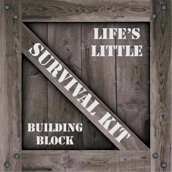 Building Block Kids Survival Kit