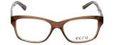 Ecru Designer Eyeglasses Collins-037 in Brown 53mm :: Rx Bi-Focal