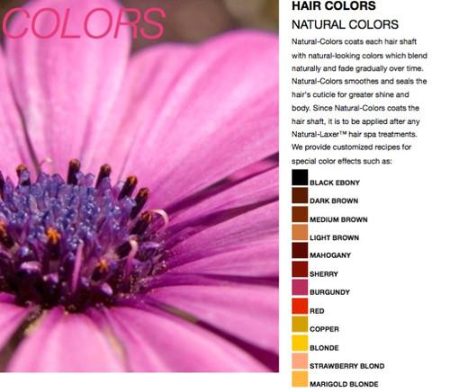 Baka Natural Colors Henna Treasured Locks