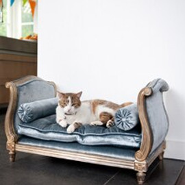 #A Palace of Versailles Louis French Daybed for Pampered Dog or Cat - 30 Inch Bed with Cushion and Bolster Pillows - Metallic Silver Gilt Luxurie Furniture Finish NF15 with Tufted Pale Blue Velvet Upholstery 076