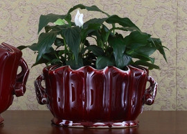 Oxblood Red - Luxury Porcelain - 15.25 Inch Scalloped Shell Footbath, Planter 8986