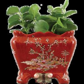 Crimson Garden Pattern - Luxury Hand Painted Porcelain - 11 Inch Planter