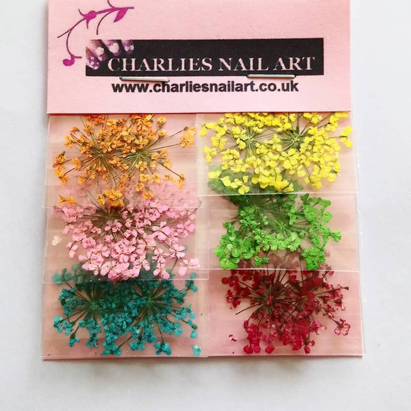 Dried flowers nail art decorations