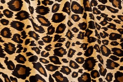 leopard-print.png
