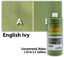 Water Reducible Concentrated (WRC) Concrete Stain - English Ivy 32oz