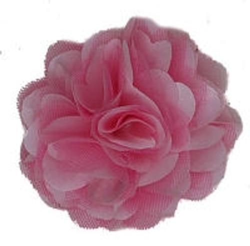 Rosette flowers - Pink