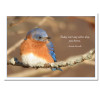 "Business Birthday Cards Bluebird with Lewis Carroll Quotation cover Photo of bluebird with Lewis Carroll quotation: ""Today isn't any other day, you know"""