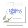 "Sympathy Note Card - Violets Note Card cover has an illustration of violets and the words ""with deepest sympathy"""