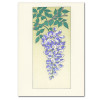 "Saturn Press All Occasion Card ""Wisteria"" Cover shows an illustration of wisteria flowers drawn in purples and greens."