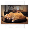 """New Year's Card: Joy and Peace shows a dog and cat sleeping in front of a fire with the quote: """"May joy and peace surround you, contentment latch your door, and happiness be with you now and bless you evermore."""""""