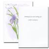 Sympathy Card: Iris
