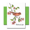 Thinking of You Note Card features an illustration of a sparrow on a blooming branch