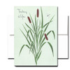 Thinking of You Note Card features a hand-painted illustration of cattails