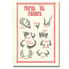 Saturn Press All Occasion Cards, Campfires  Cover shows different types of horns and antlers