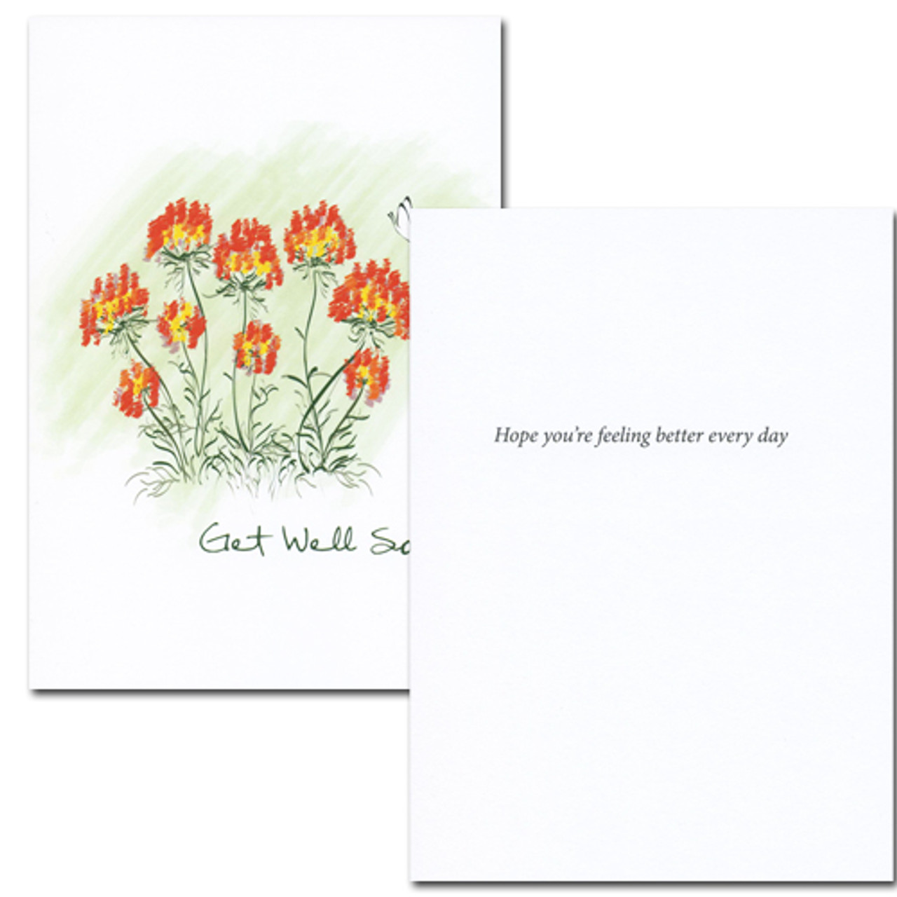 "Get Well Card- Butterfly inside has the words ""hope your feeling better ever day"" in blank ink against a white space, leaving room  for a business, corporate or medical professional get well message"