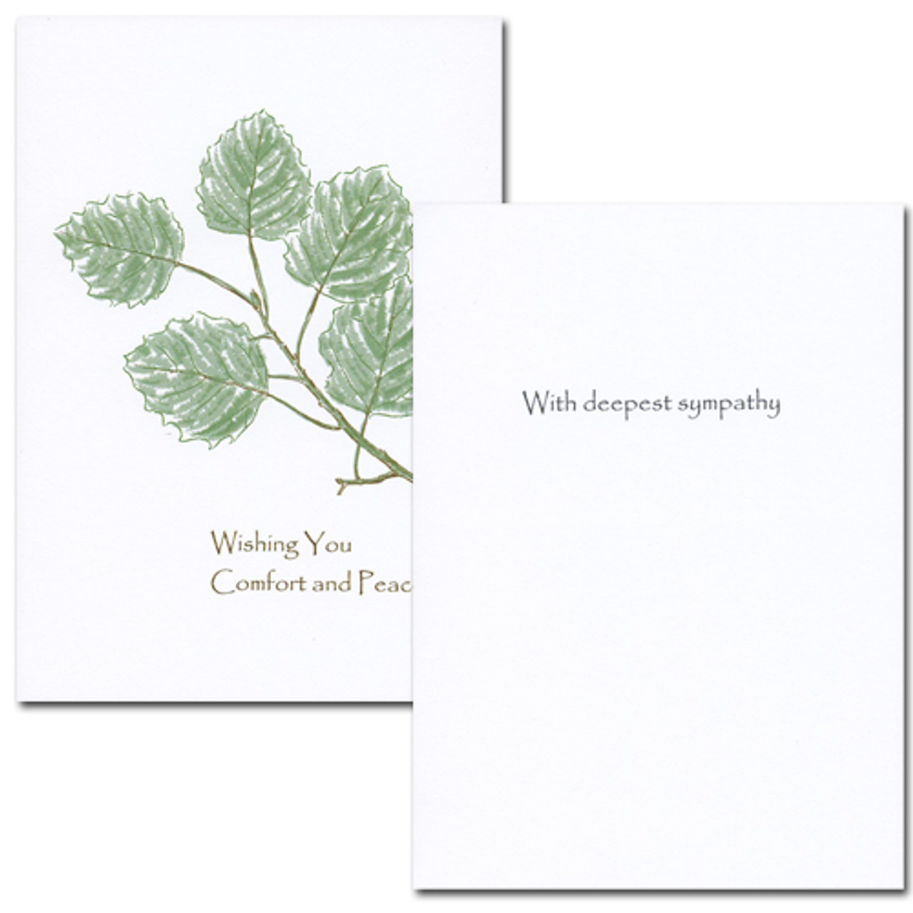 "Sympathy Card - Comfort cover is an botanical illustration of green leaves on a branch with the words ""Wishing you comfort and peace"" Sympathy Card - Comfort inside has the words ""With deepest sympathy"" and space to write a sympathy message from a medical professional, business associate or personal relationship"