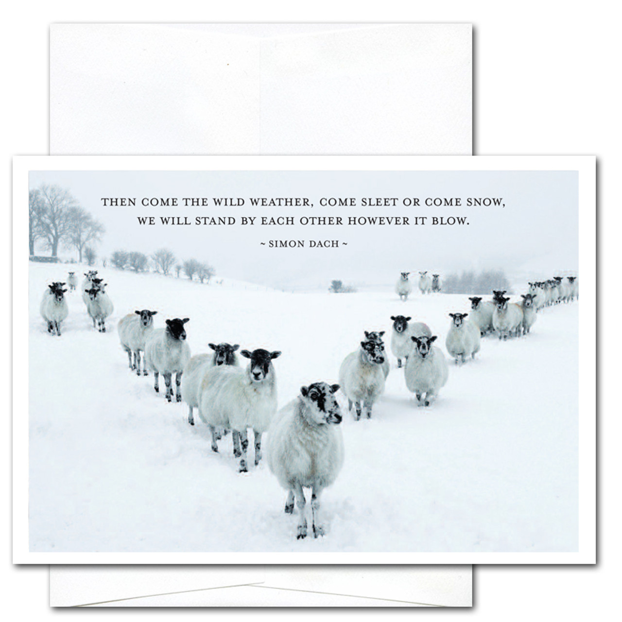 "Business New Year Card - Sleet or Snow: Cover photo shows a group of sheep standing in a ""V"" in a snow covered field with the Simon Dach quotation ""The come the wild weather, come sleet or come snow, we will stand by each other however it blow"""