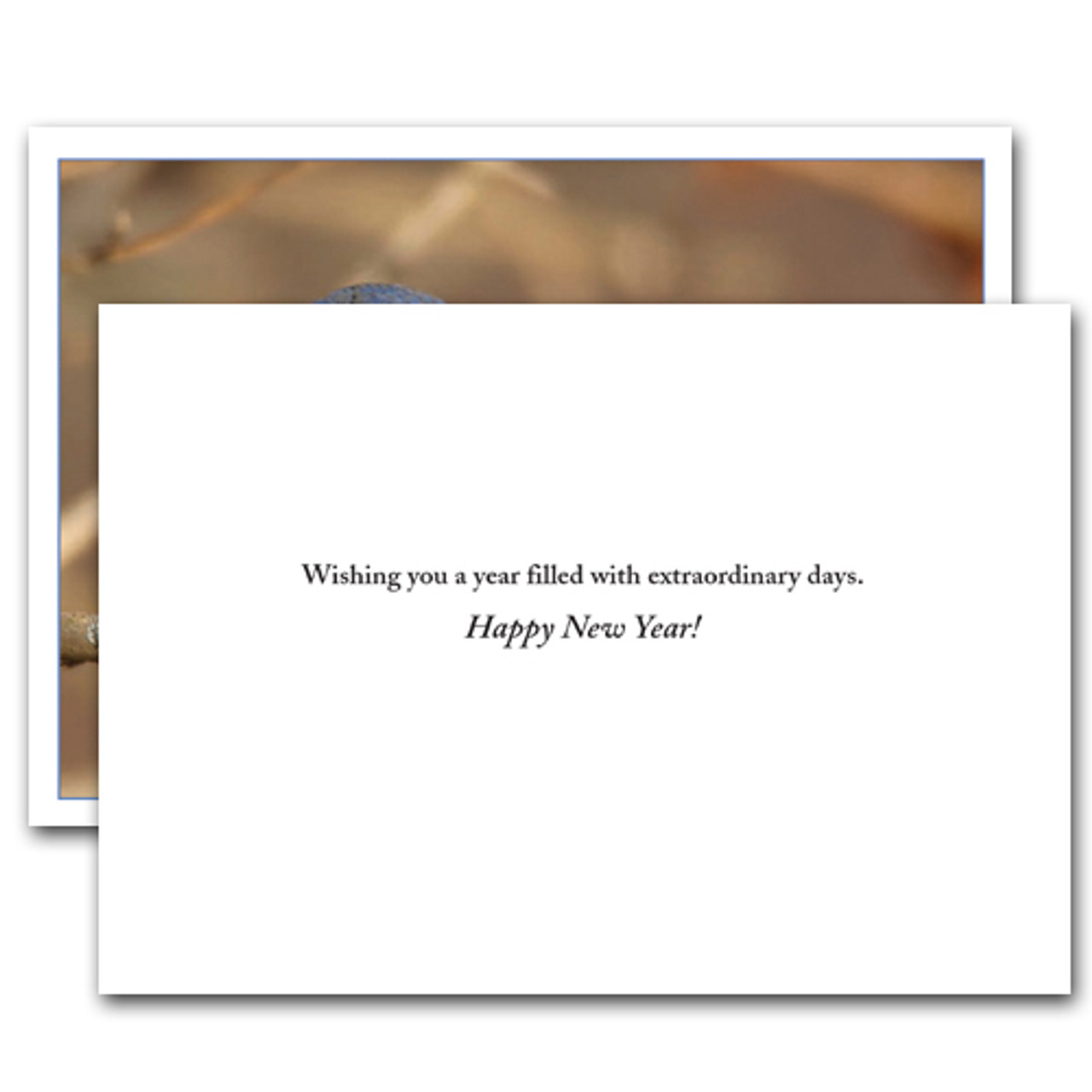 "Inside of card New Years Greeting reads, ""Wishing you a year filled with extraordinary days. Happy New Year!"""