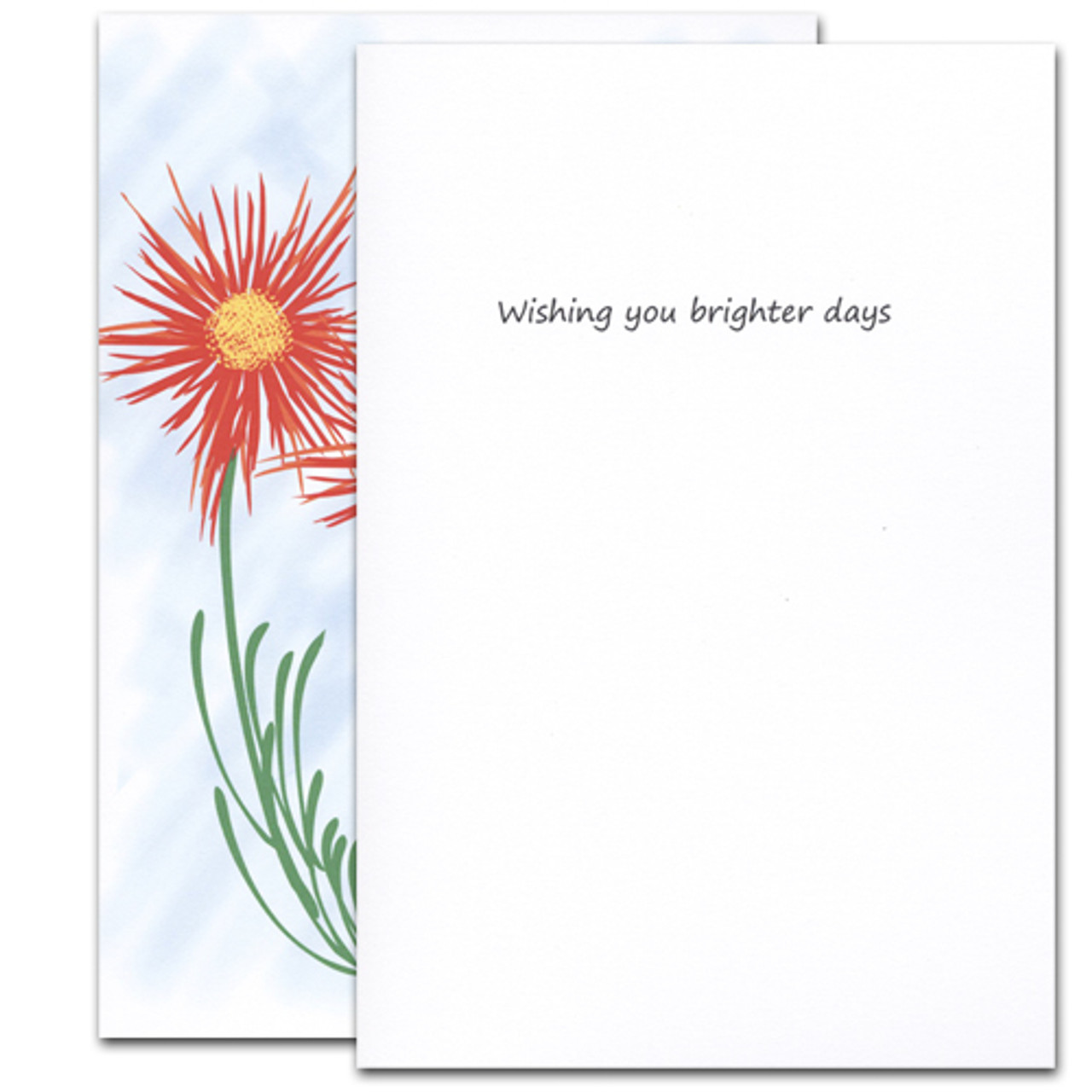 "Get Well Card -Thinking of You cover has a group of bright red and yellow wildflowers and the words ""Thinking of you"" on a blue background Get Well Card -Thinking of you inside has the words ""wishing you brighter days"" and space to write a get well message from a medical professional, business associate or personal relationship"