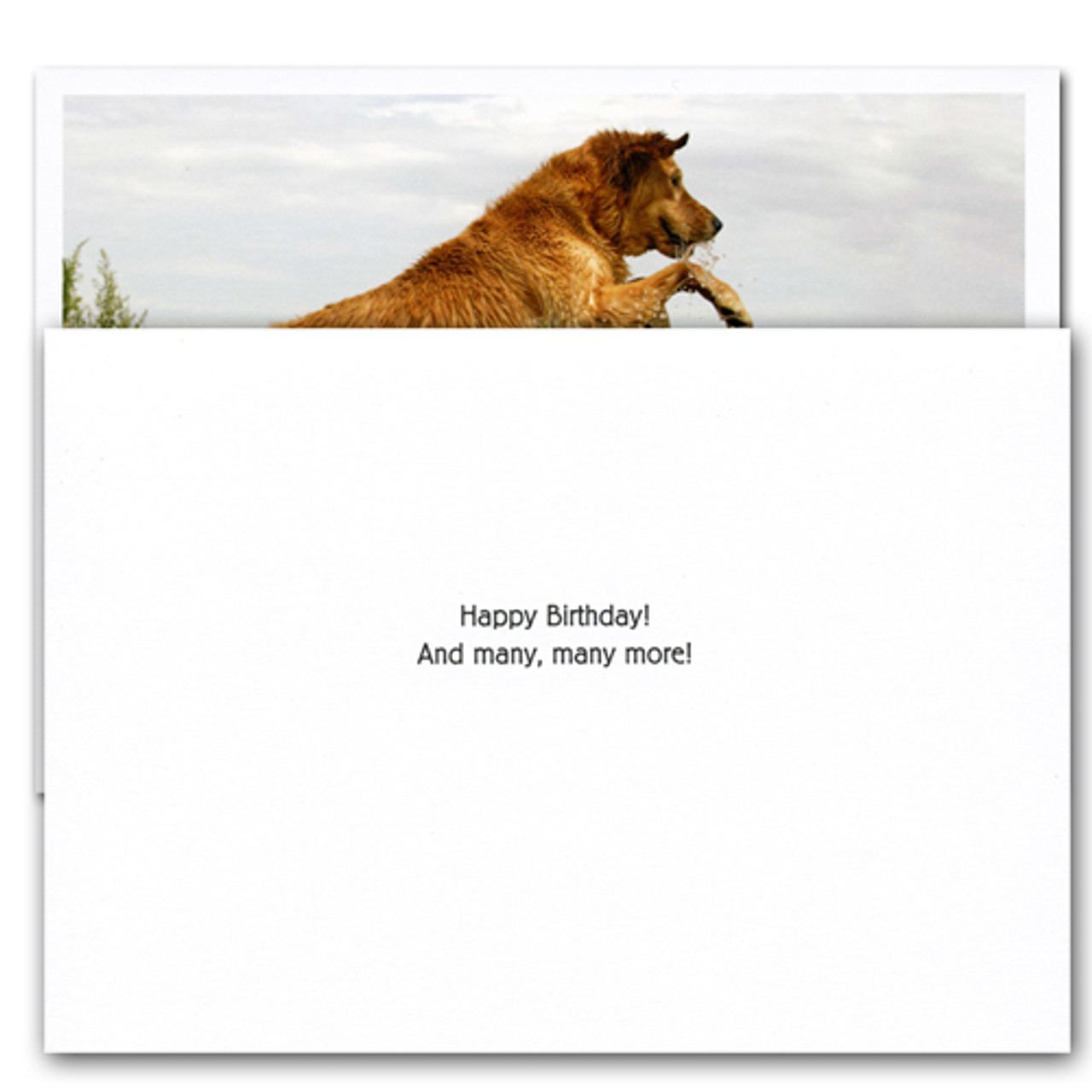 """Ogden Nash quotation card inside with the words """"Happy Birthday! and Many, many, more!"""""""