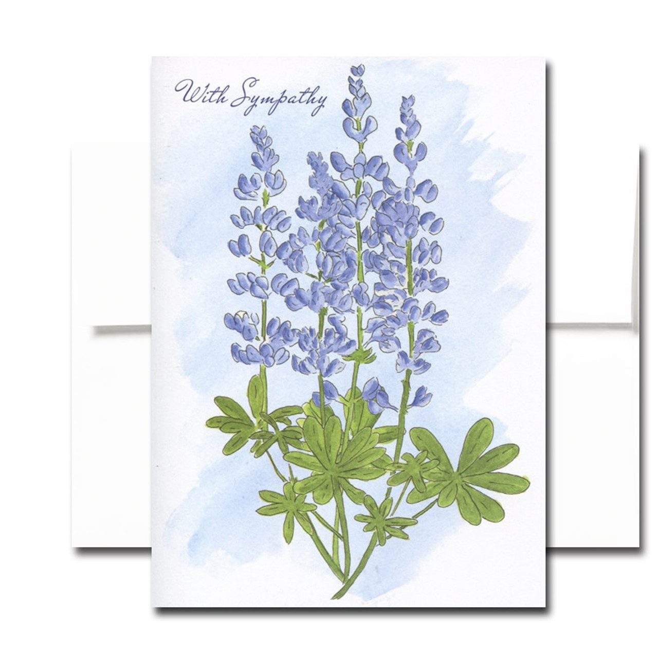 Blank Sympathy Card: Lupine. Hand-painted watercolor illustration.