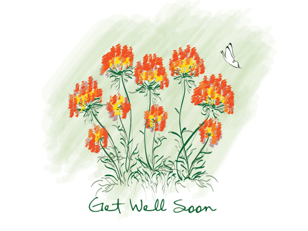Get Well: Butterfly