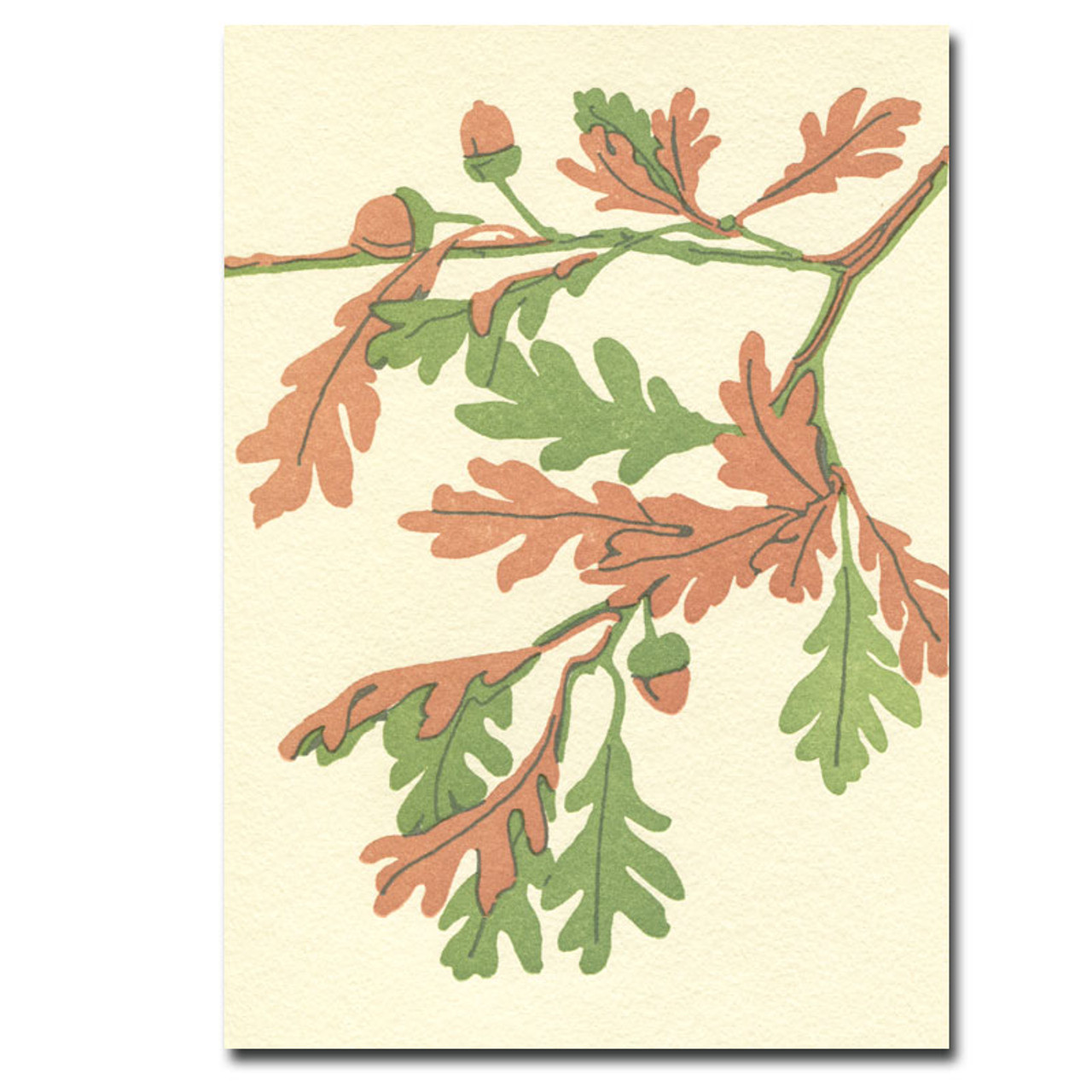 Saturn Press All Occasion Letterpress Card features and oak branch with acorns