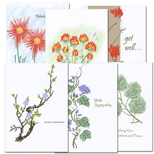 Assorted Get Well Cards and Sympathy Cards