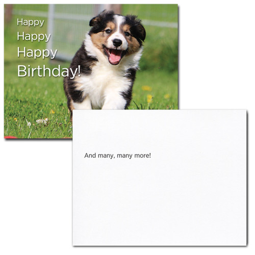 Happy Puppy Birthday Postcard greeting reads, And man, many more