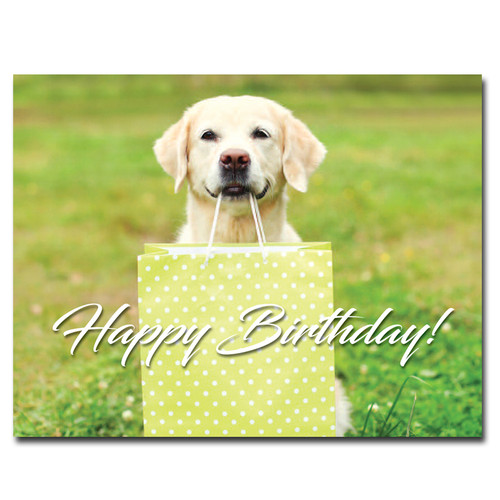 Favorite Things Birthday Postcard shows a retriever holding a gift bag